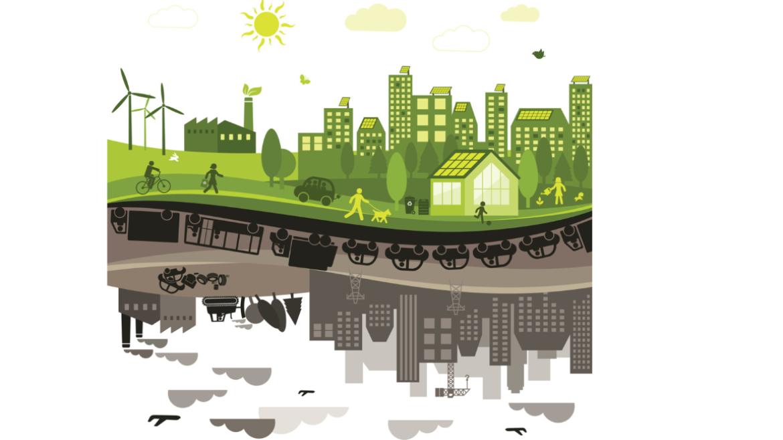 Forschungsbereich Nachhaltigkeit und Transformation